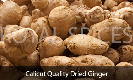 Calicut Quality Dried Ginger